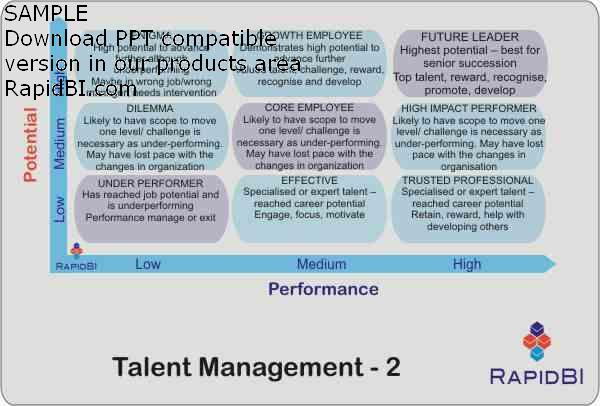 Talent Management nine box grid alternative version