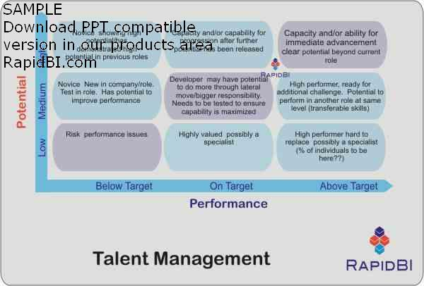 Talent Management nine box grid