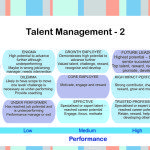 Nine Box Grids for Talent Management