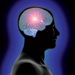 Image of head-and-brain-learning-innovation