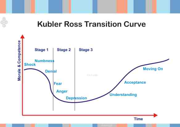 kudler fine foods hris analysis Kudler fine foods (aka: human resource policies, sales and we need to inquire into a value chain analysis kudler's can use the value chain to analyze.