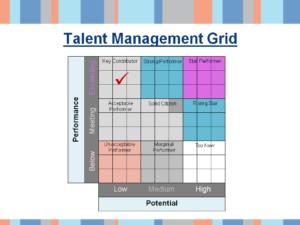 Talent management sample slide - 9 box grid