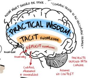 The wise leader - Knowledge understand action