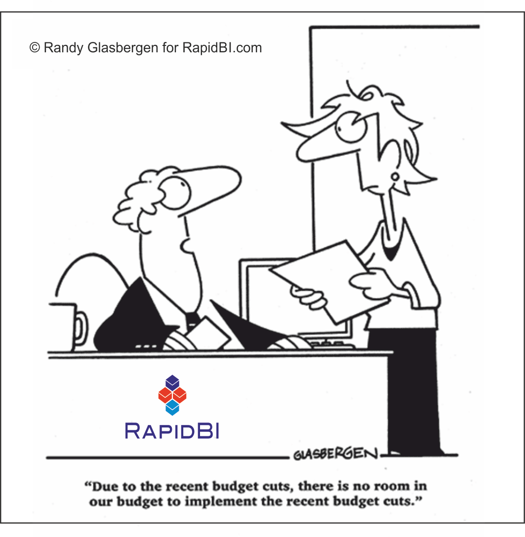 RapidBI Daily Cartoon #12