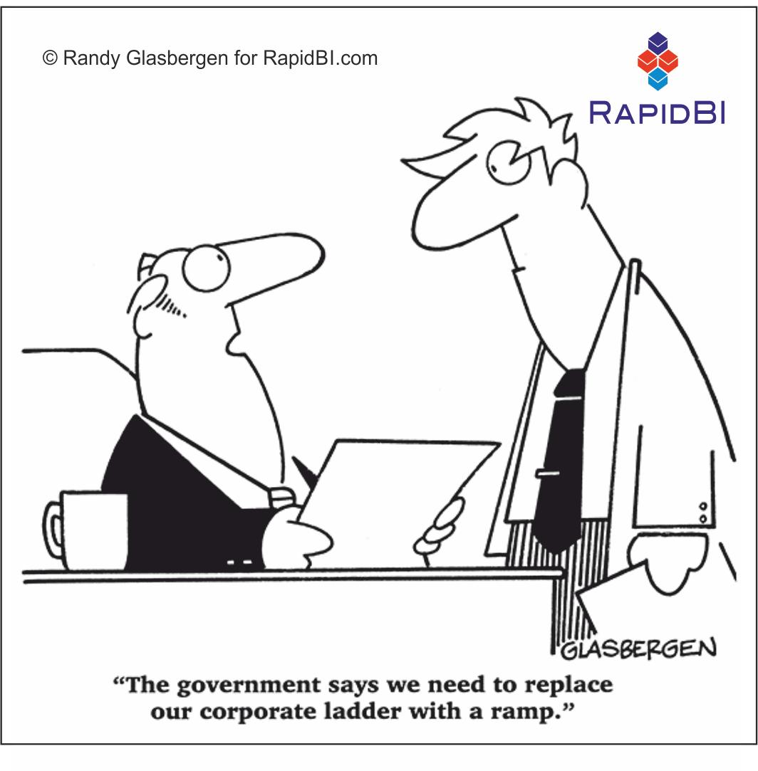 RapidBI Daily Cartoon #23