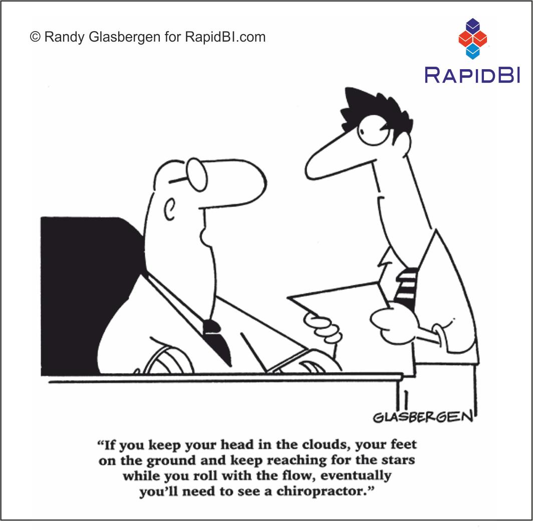 RapidBI Daily Cartoon #24