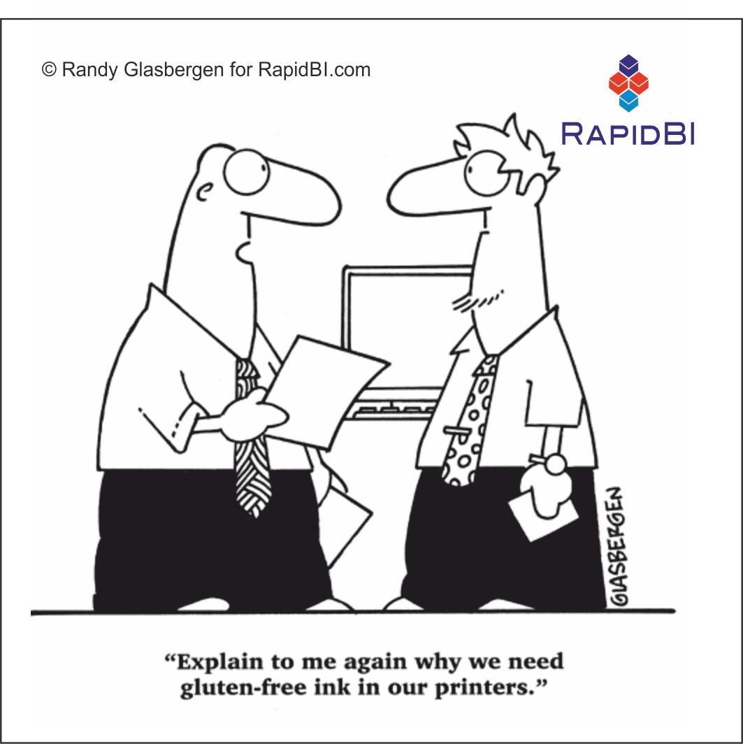 RapidBI Daily Cartoon #28