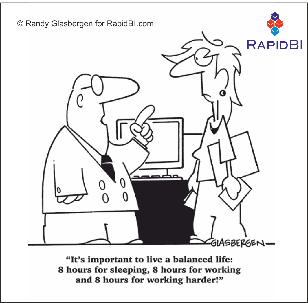 RapidBI Daily Cartoon #29