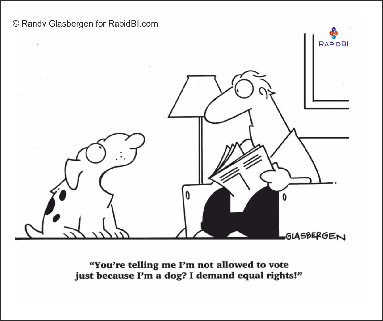 RapidBI Daily Cartoon #37