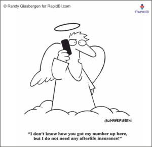 RapidBI Daily Cartoon #48