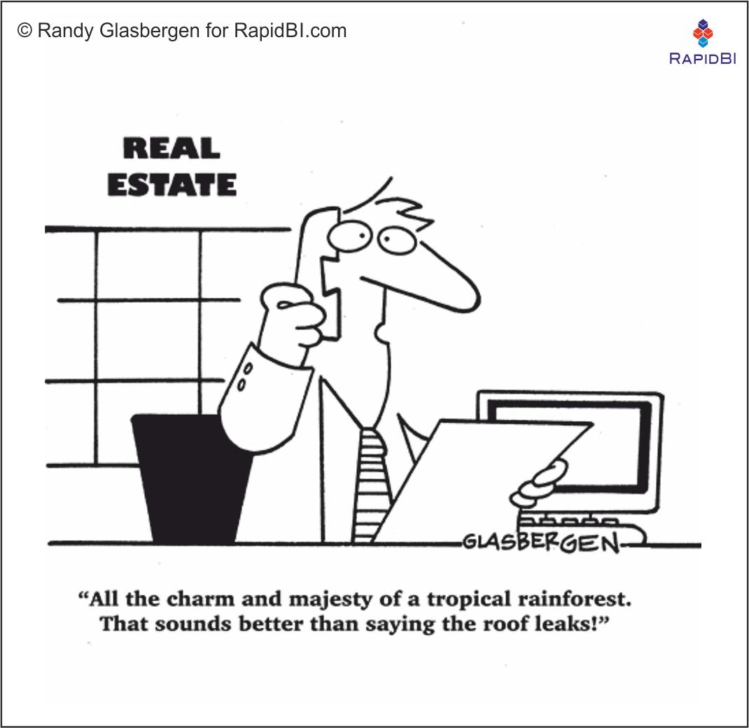 RapidBI Daily Cartoon #59