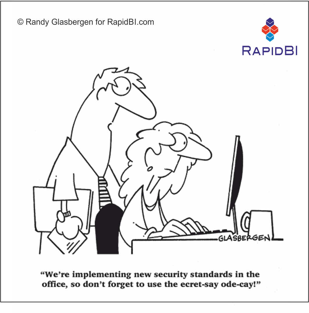 RapidBI Daily Cartoon #9