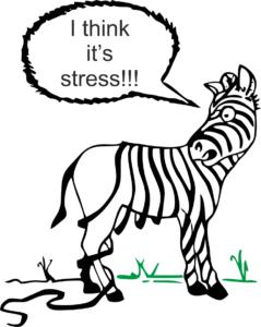 stress, poor training