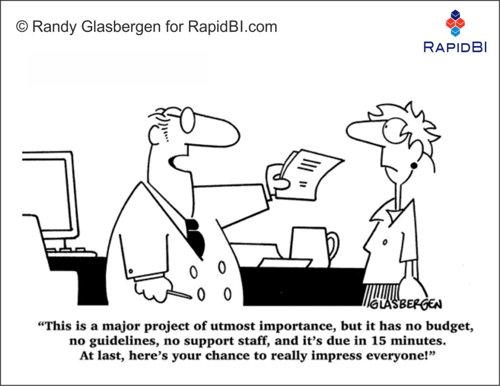 RapidBI Business Cartoon (113)