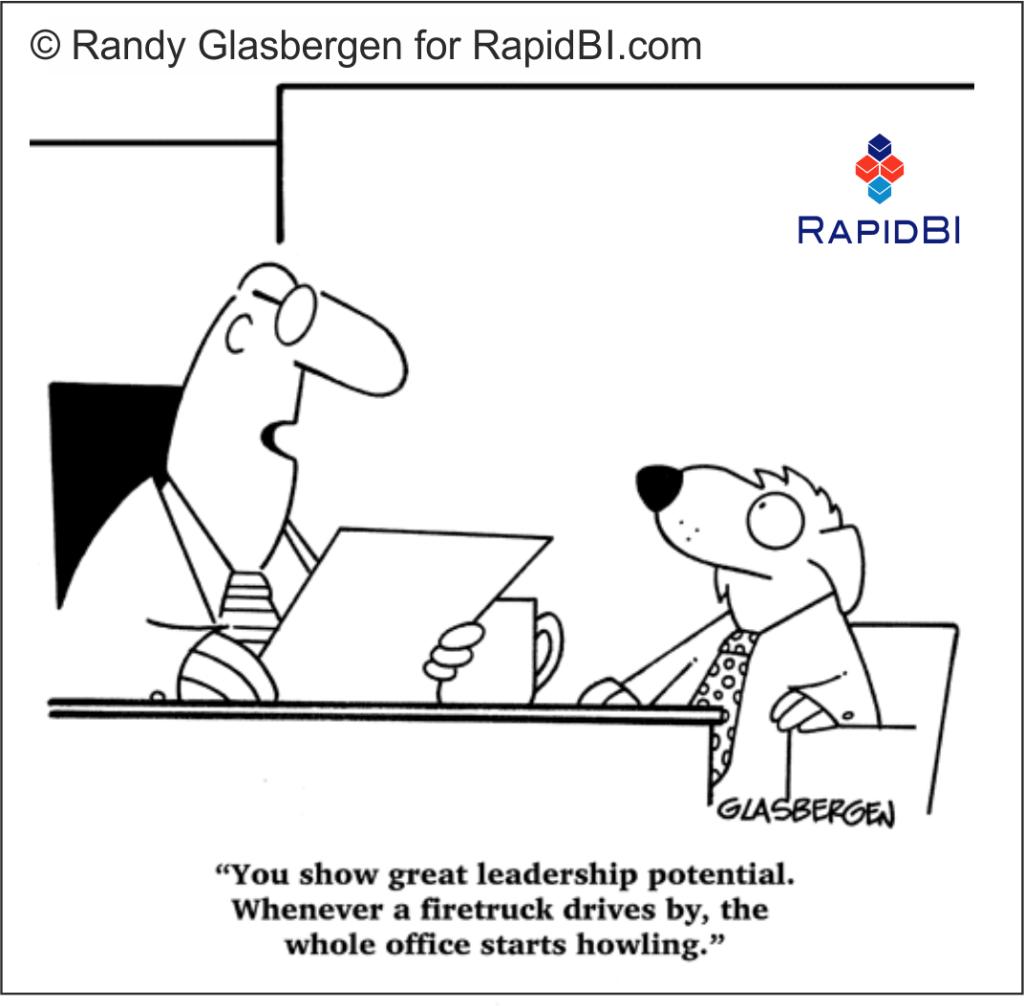 RapidBI Daily Business Cartoon #141