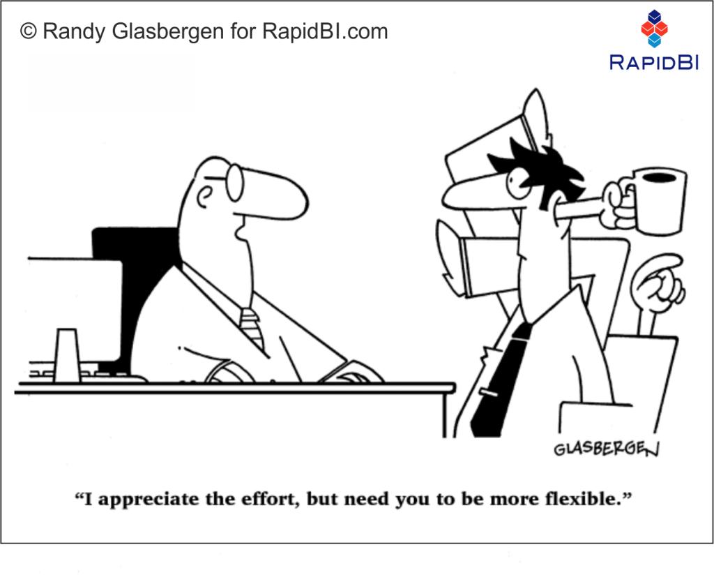 RapidBI Daily Business Cartoon #153