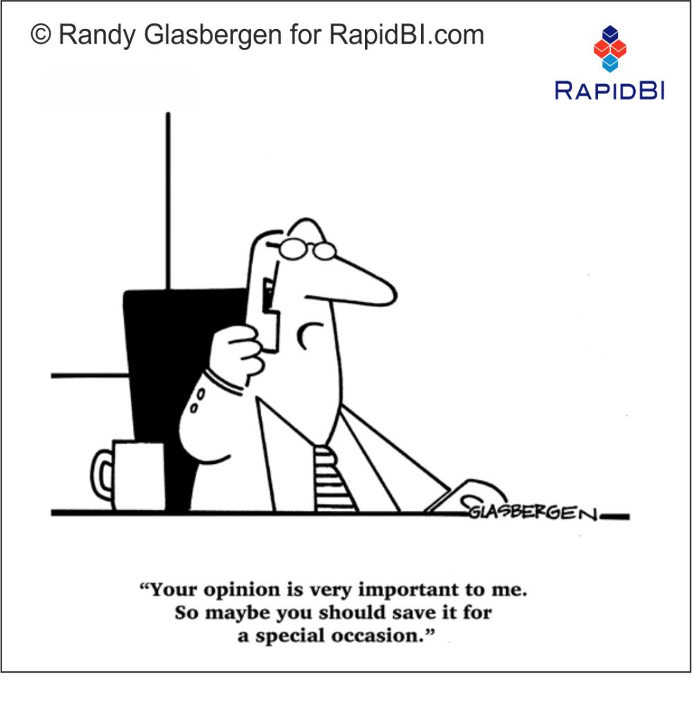 RapidBI Daily Business Cartoon #162