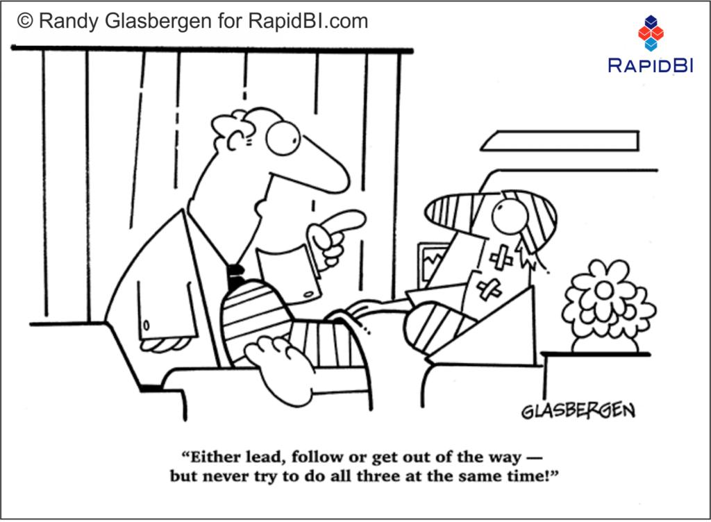 RapidBI Daily Business Cartoon #172