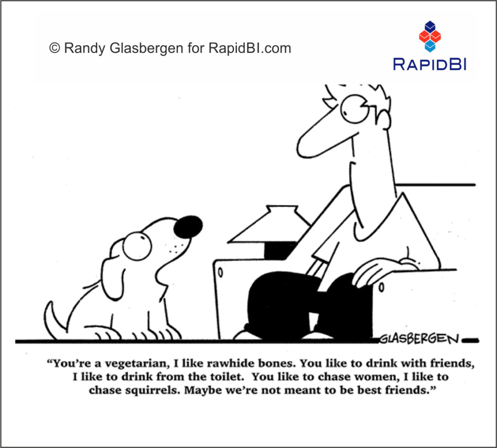 RapdiBI Daily Business Cartoon #197