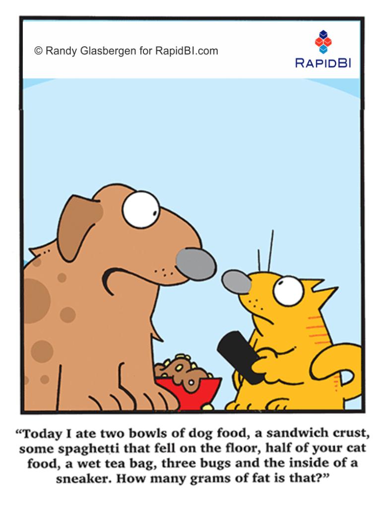 RapidBI Daily Business Cartoon #200