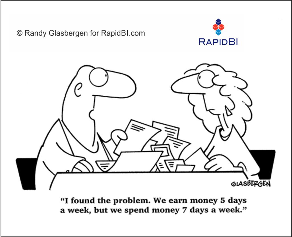 RapidBI Daily Business Cartoon #209