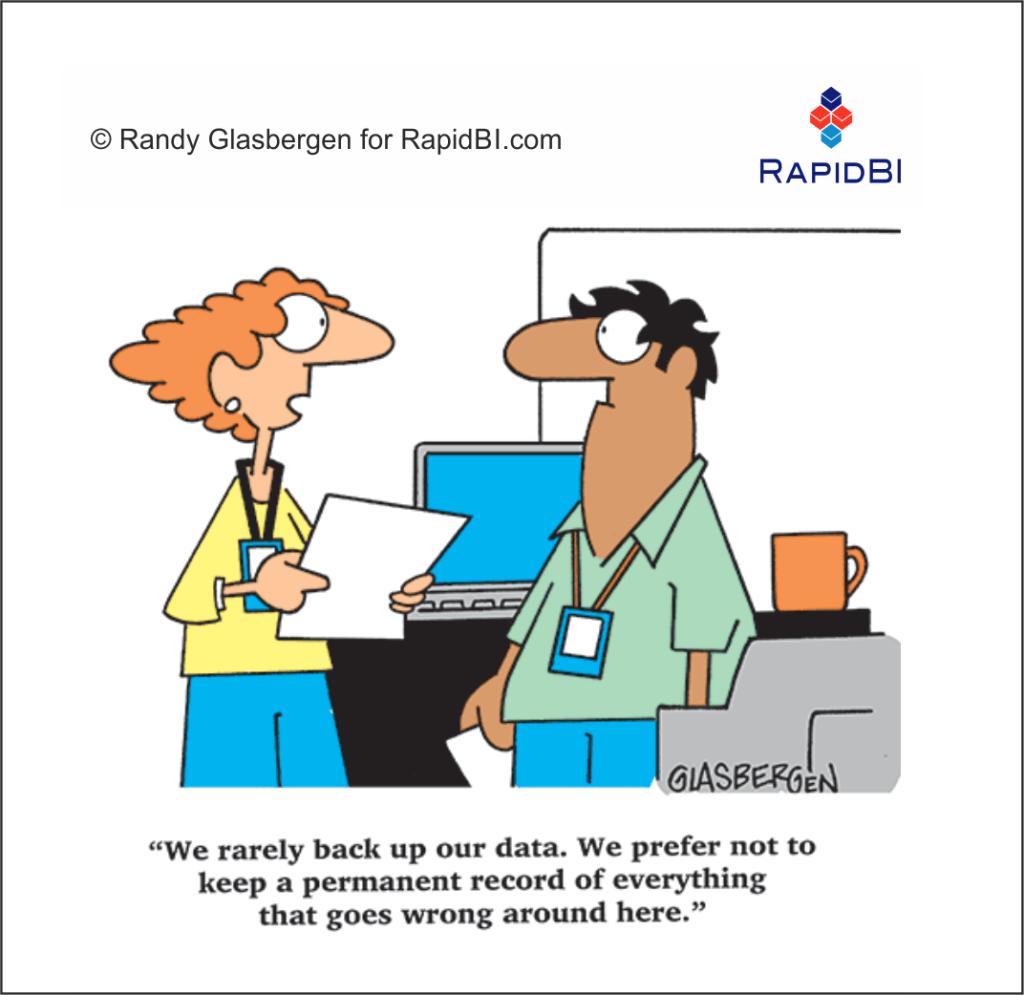 RapidBI Daily Business Cartoon #212