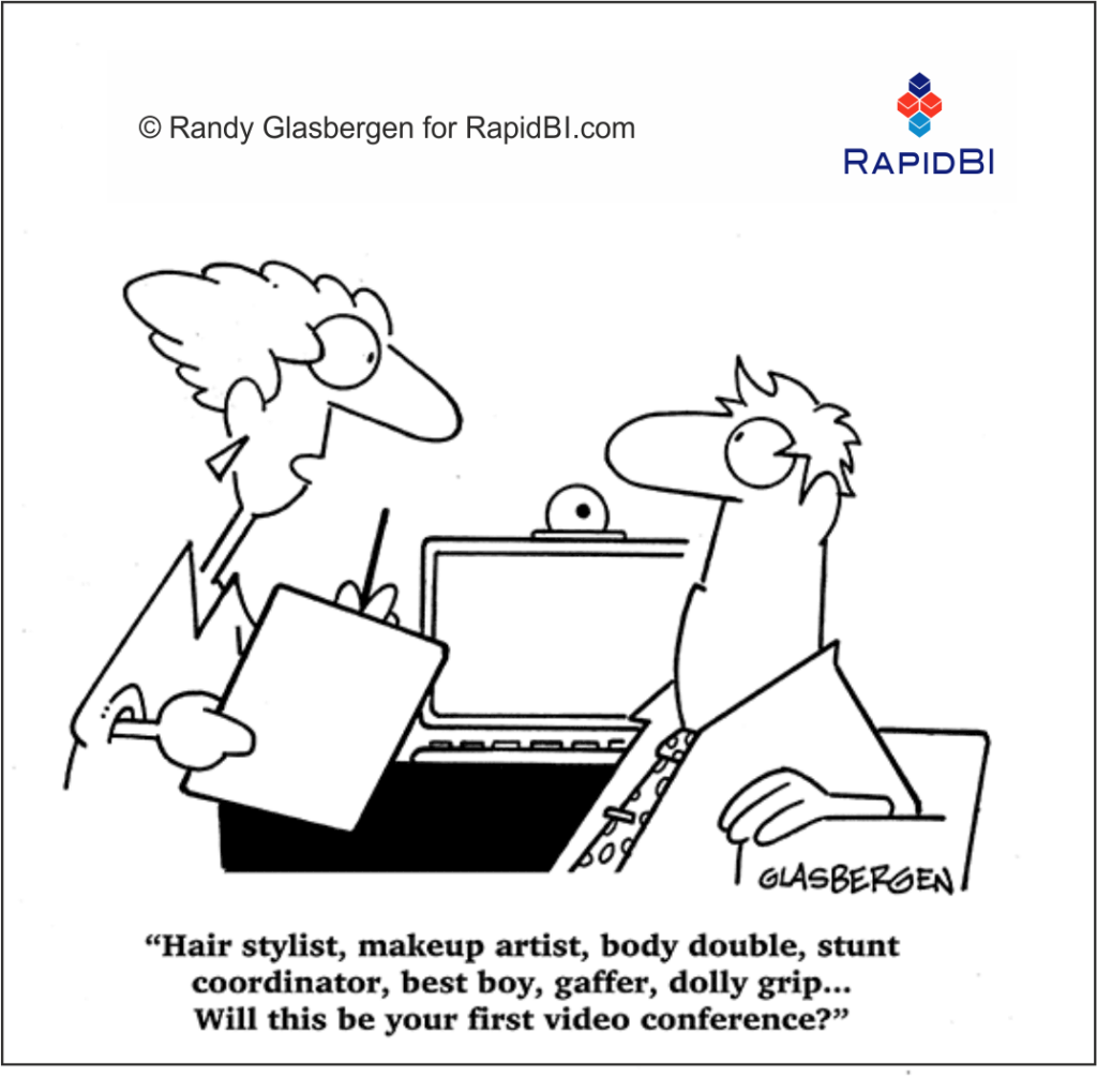 RapidBI Daily Business Cartoon #220