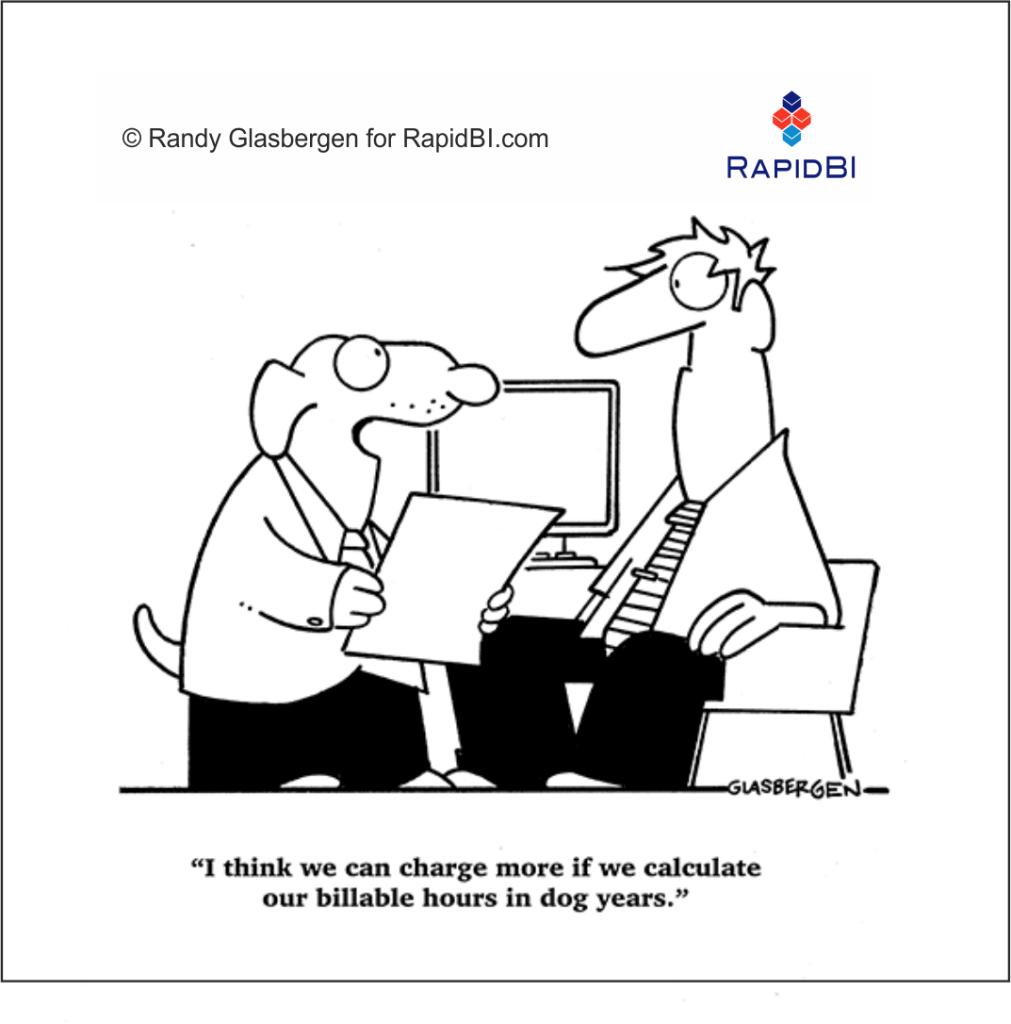 RapidBI Daily Business Cartoon 234
