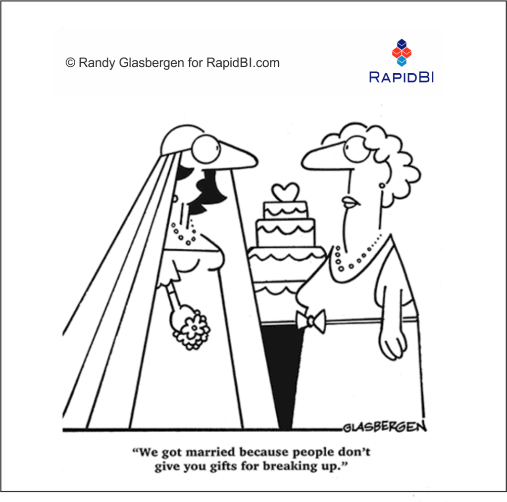 RapidBI Daily Business Cartoon #246