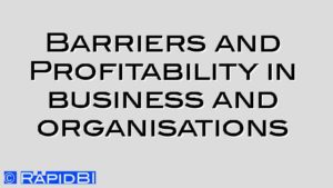 Barriers and Profitability in business and organisations