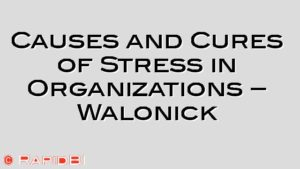 Causes and Cures of Stress in Organizations – Walonick