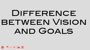 Difference between Vision and Goals