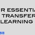 Four essentials for transfer of learning