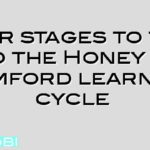 Four stages to the to the Honey & Mumford learning cycle