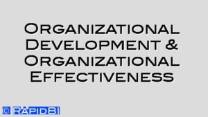 Organizational Development & Organizational Effectiveness