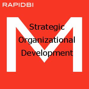 Strategic Organizational Development