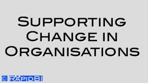 Supporting Change in Organisations