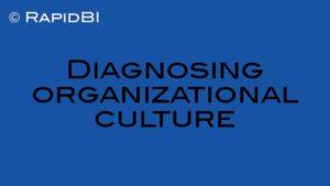 Diagnosing organizational culture