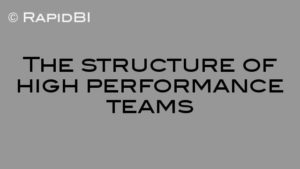 The structure of high performance teams