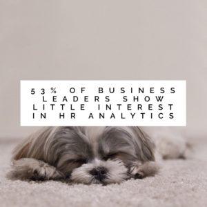 business-leaders-analytics