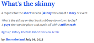 whats the skinny definition - the short version
