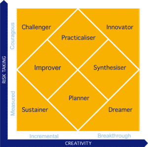 Creatrix innovation leadership and career roles
