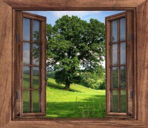 Open window Pixabay