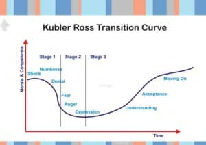 Kubler Ross Personal Change Curve